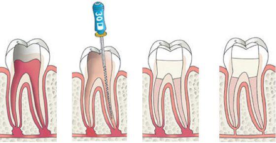 Cleyburch tandartsen Noordwijk